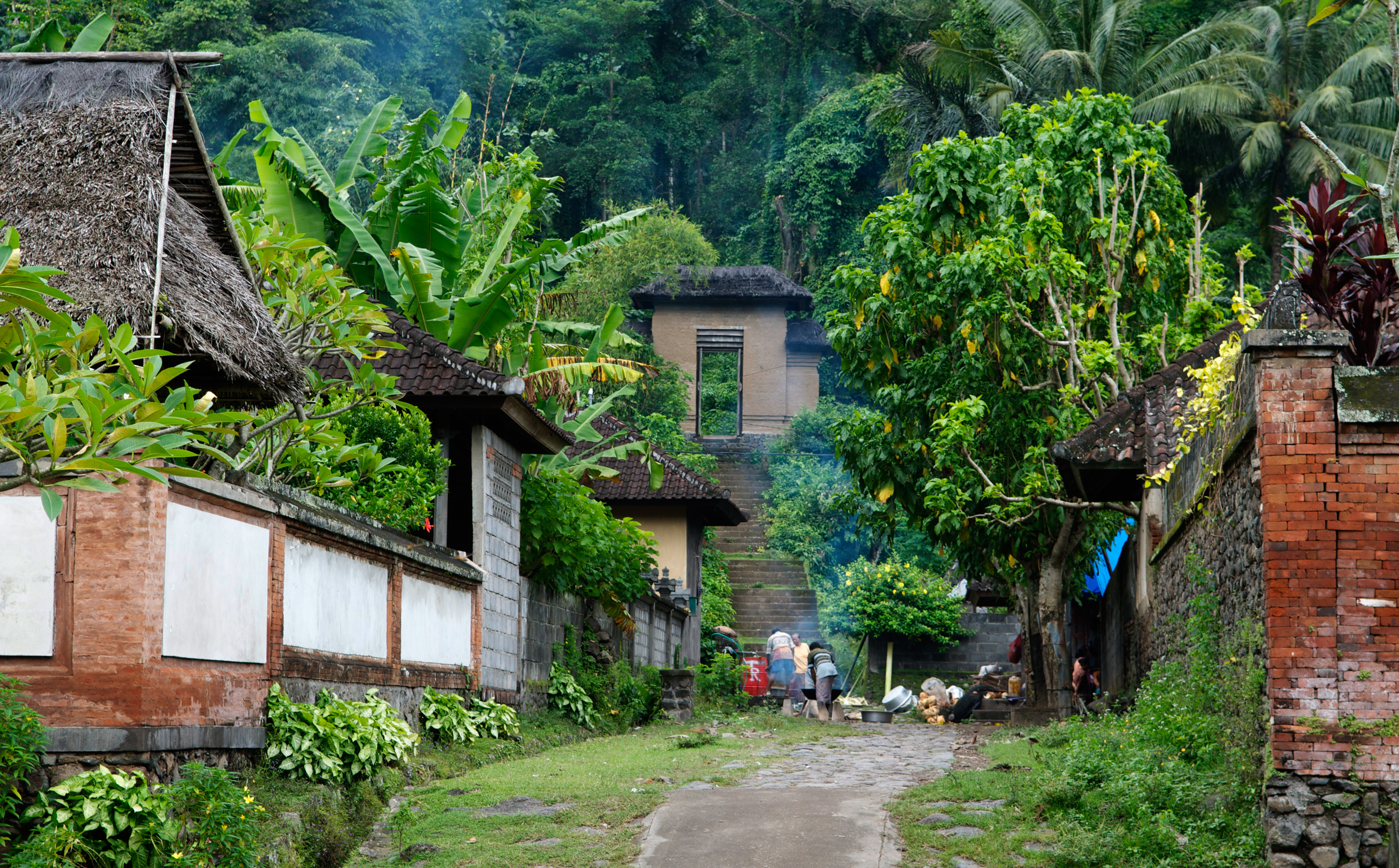 Traditional_village,_Bali.jpg